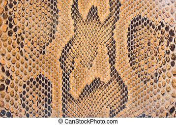 natural python skin texture - background