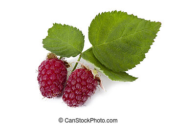 natural raspberries isolated on white