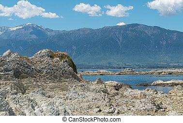 Natural rock on Kaikoura sea coast, New Zealand natural...