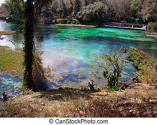 rainbow springs state park - natural scenery at rainbow...