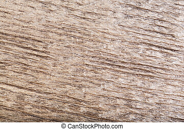 Natural scratched dark old wood bog oak texture as background.