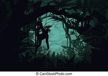 natural, selva, paisagem, modelo