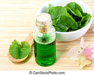 Natural Spa Ingredients . - Centella asiatica Urban, Asiatic...