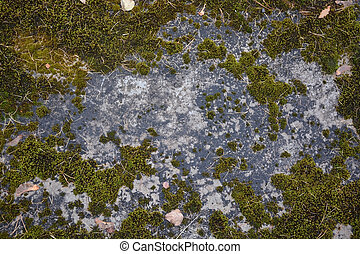 Natural stone background- granite with moss