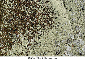 Natural Stone Texture / Background