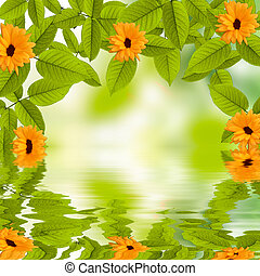 Natural summer green background with sun reflecting in water
