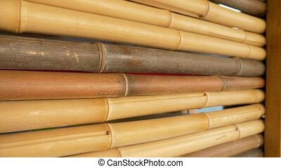 natural texture background. bamboo fence.