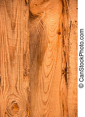 Natural texture (wood background)