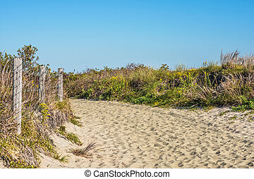 Natural Trail Sandy Hook