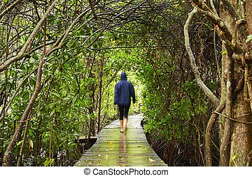 Natural tunner - Woman is walking in natural tunnel, Sri...