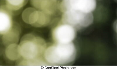 abstract background with unfocused lights of natural green forest