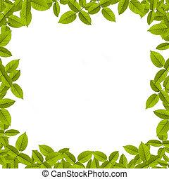 natural, verão, experiência verde, com, sol