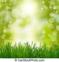 natural, verão, experiência verde