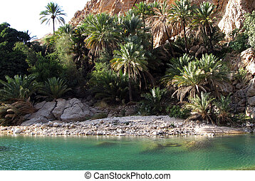 Natural Wadi in Oman.