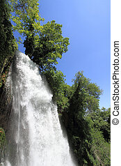 Natural waterfall in green forest