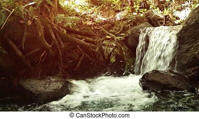 Natural Waterfall in Thai Tropical Rainforest - Water ...