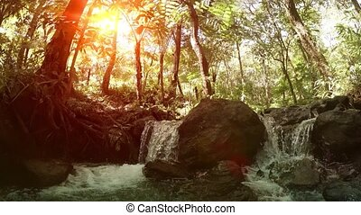 Natural Waterfall in Thai Tropical Rainforest, with Sound - ...