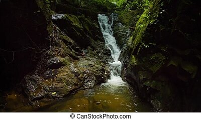 """""""Natural Waterfall over Mossy Rocks in the Jungle, with Sound"""""""