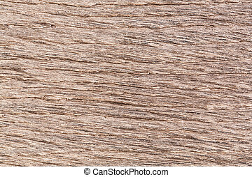 Natural wood bog oak texture background.