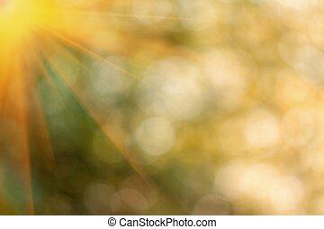 Natural yellow blurred background. - Beautifully yellow ...