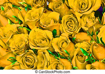 Natural yellow roses background