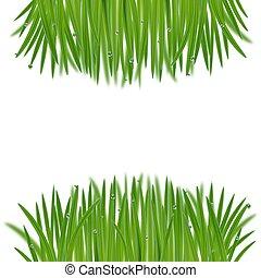 naturale, erba, cornice, bokeh, effetto