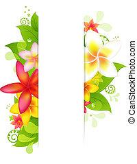 naturale, fondo, con, fiore