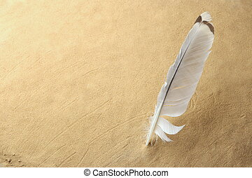 naturale, fondo., sabbia, penna, bianco, vuoto