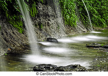 naturale, foresta, cascate