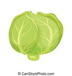 naturale, icona, cabbage., sano, product., vegetariano, cibo., fattoria fresca, verde, vegetable., organico, ingrediente, cartone animato, dish.