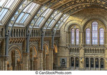 naturale, museo, londra, interno, storia