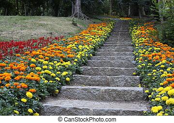 naturale, pietra, landscaping, in, giardino casa, con, scale, e, muri contenimento