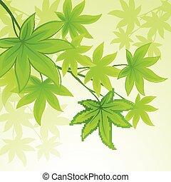 naturale, primavera, foglie, vettore, sfondo verde