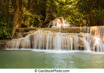 naturale, profondo, foresta, cascate