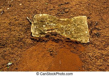 naturale, rosso, sabbioso, suolo, pietre, e, verde, piante