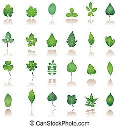 naturaleza, árbol, leafs, iconos