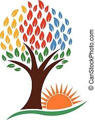 naturaleza, árbol, y, vibrante, sol, vector, logotipo