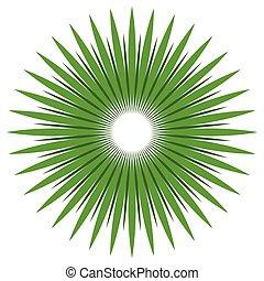 naturaleza, resumen, líneas, forma, diseño, radial, concepts., element., circular