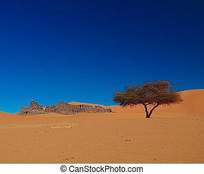 naturaleza, tassili, sundstone, duna, paisaje, escultura de...