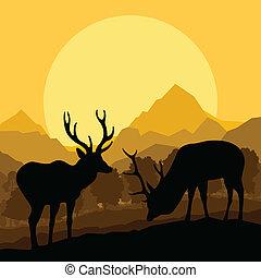 naturaleza, venado, vector, bosque, plano de fondo, salvaje,...
