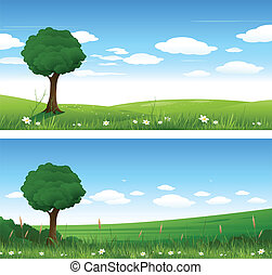 naturaleza, verano, paisaje
