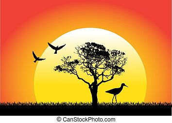 nature and birds on sunset background