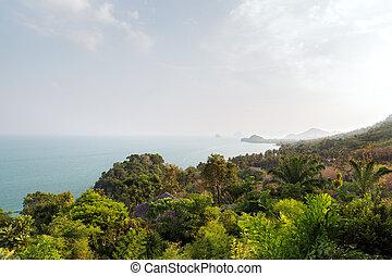 forest and ocean landscape on sri lanka
