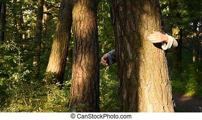 nature., arbre, mains, autour de, ambiant, emballé, coffre, écologiste, adulte, forêt, woods., caucasien, aimer, activiste, femme, étreindre