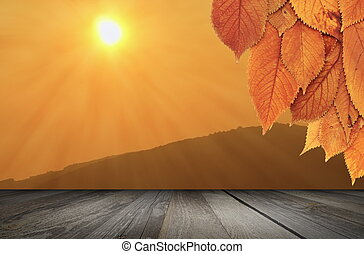 nature autumn backdrop