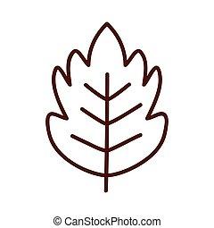 nature autumn leaf line style icon vector design