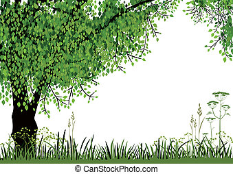 Nature background - Green tree and meadow on white...