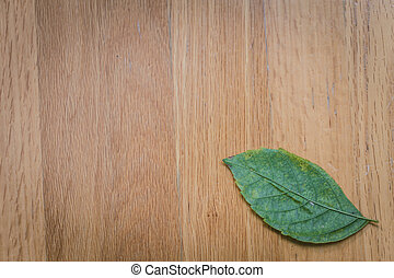 nature background. green leaf on wood table nature background.