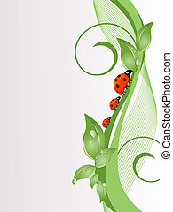 nature background - vector illustration of lady beetles on...