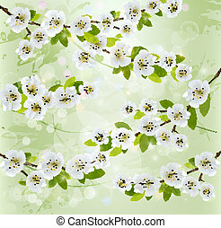 Nature background with blossoming tree branches. Vector illustration.